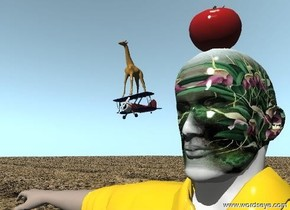 The flower texture is on the head of the man.  The biplane is 2 inches to the left of the head of the man.  the biplane is 68 inches above the ground. the biplane is 5 inches long.  The tomato is on the man.  The ground has a dirt texture.  The texture is 30 feet wide.  The giraffe is on the biplane.  The giraffe is 5 inches tall.