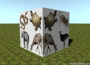 there is a large giraffe block. a large elephant block is next to the giraffe block. a large turtle block is on the giraffe block. a large snake block is on the elephant block. the large whale block is behind the giraffe block. the large mouse block is on the whale block.  the ground has a grass texture. the texture is one foot wide.