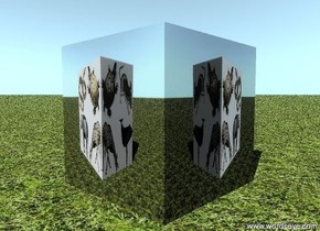 the impi-31 cube is on the ground. the ground has a grass texture. the texture is one foot wide.