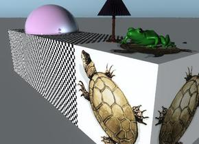 the checkerboard cube is next to the turtle cube.  the dark green frog is on the turtle cube.  the checkerboard cube is 3 feet wide and 12 inches tall. the tiny lamp is on the checkerboard cube. it is to the left of the frog. the shiny violet sphere is in the checkerboard cube. it is 1 foot to the left of the lamp.