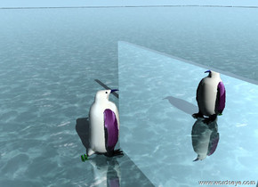 The big  penguin-vp7324 is on the watery ground. The BODY of the penguin is cornsilk. The BEAK of the penguin is blue. The EYES of the penguin is black. The WINGS of the penguin are purple. The FEET of the penguin are green. The penguin is shiny. The penguin is facing the silver wall. The wall is facing the penguin. The penguin is five feet away from the wall. A light is fifty feet above the penguin.