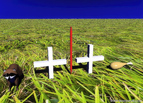 """The mini animal is 5 inches to the left of the """"+"""". the huge red pen is 2 inches to the right of the """"+"""". the second """"+"""" is two inches to the right of the pen. the large meat is 5 inches to the right of the second """"+"""". the meat is facing right. the ground is grass. the sky is blue."""