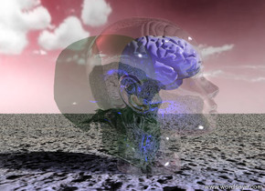 the green  transparent skull is inside the  glass head.  the head is one foot tall. the skull is 11 inches tall.  a white  brain is inside the skull. the brain is six inches tall.  the ground is volcanic rock.   the sky is pink.  it is partly cloudy.  the camera light is blue.