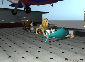 the dog is facing the kettle drum. the dog and the kettle drum are on the floor. the floor is 200 feet big. the big cat is facing the huge drum-musical-instrument-tp29352. the big cat is on the floor. the huge drum-musical-instrument-tp29352 is on the floor. the huge drum-musical-instrument-tp29352 is facing the kettle drum. the fish is in front of the computer. the fish and the computer are on the floor. the fish is facing the computer. trees is behind the floor. the  big building is behind the floor. the other building is to the left of the floor. an airplane is  05 feet above the ground. a animal is on the airplane.