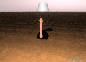 An ostrich is in the sandy brown ground. The ground is 14 foot tall sand.  A bucket is upside down.  The bucket is above the ostrich. The sky is antique mauve