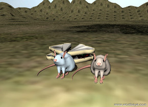 The igloo blue rat is beside the igloo blue rat. The large food is behind the rat.The rats are on the extremely tall grassy mountain range. The sky is cloud.