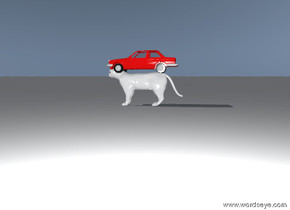 The tiny red car is on the big white cat.