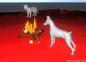 it's sunset. the cat is on fire on the red island. the dog is on the island. the dog is facing the cat