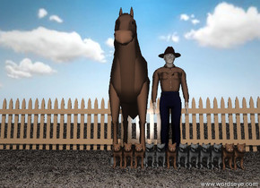 a cowboy is behind twelve cats. a horse is next to the cowboy. the ground is grass. the sky is partly cloudy. a wide fence is behind the horse. the horse and the cowboy and the cats are unreflective.