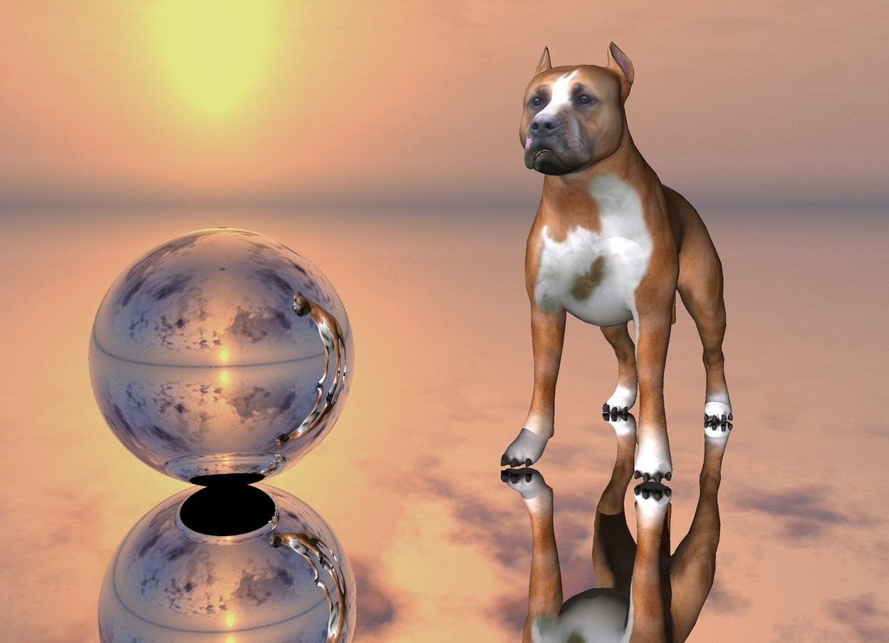 Input text: the  dog. the silver sphere is 3 inches left of the dog. the silver ground. the dog is facing southwest.