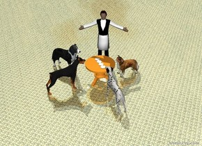The ground is shiny big tile.  There is a big table.There are 4 plates on the table. There is a big human next to the table. The human is facing the table.    There is a big dog in front of the table. It is facing the table. There is a big dog behind the table. It is facing the table. There is a big dog to the right of the table. It is facing the table. There is a big dog to the left of the table. It is facing the table.