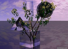 the very tiny tree is in the transparent cube. the ground is shiny black. the  transparent cylinder is 12 inches above the cube. the transparent sphere is 5 inches to the right of the cylinder. it is 10 inches above the cube. the transparent pyramid is on the cube. it is slightly to the left. the very tiny man is on the cube.