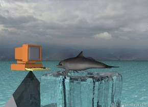 a dolphin is facing a large computer. the dolphin is two feet in front of the computer. the ground has a water texture. the dolphin is on the transparent ice cube. the computer is on the transparent pyramid. the pyramid is seven feet wide. the ice cube is seven feet wide.