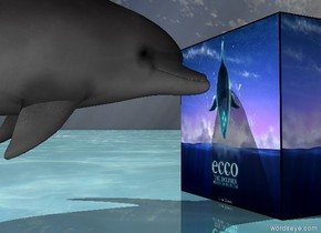 the [image-7911] cube. the shiny ground is water. the small dolphin is 1 inch to the left of the cube. dolphin is 4 inches above the ground. dolphin is facing the cube.