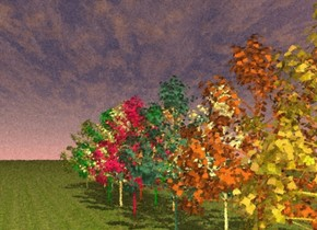 The ground is grass.  There is a green poplar tree. There is a  orange red poplar tree .5 foot to the right of the green poplar tree. There is a  spicy gold poplar tree .5 foot to the left of the green poplar tree.   There is a  autumn gold poplar tree .5 feet behind the green poplar tree. There is a crimson poplar tree .5 feet to the left of the autumn gold poplar tree. There is a  green poplar tree .5 feet to the right of the autumn gold poplar tree.  There is a  bay leaf green poplar tree .5 feet behind the shiny autumn gold poplar tree.  There is a  sunlight yellow poplar tree .5 feet to the right of the shiny bay leaf green poplar tree.  There is a  straw yellow poplar tree .5 feet to the left of the shiny bay leaf green poplar tree.   There is a  grasshopper green poplar tree .5 feet behind the shiny bay leaf green poplar tree.  There is a  honey gold poplar tree .5 feet to the right of the shiny grasshopper green poplar tree. There is a red orange poplar tree .5 feet to the left of the shiny grasshopper green poplar tree.  There is a gold poplar tree .5 feet behind the shiny grasshopper green poplar tree. There is a nutmeg brown poplar tree .5 feet to the right of the gold poplar tree.