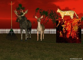 it is dusk. the two deer are on the lawn. they are a foot apart. the large  rake is to the left of the deer. the very large [fall] cube is 5 feet to the right of the deer. the ground is dirt. the fence is behind the lawn. it is 80 feet wide. the large orange and white cat is on the cube.  it is facing the deer. the three small trees are behind the fence.the sun is red.