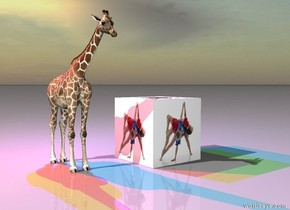 the [class] is a eight inches to the right of the very tiny giraffe.  the red  light and the blue light are above the giraffe. the green light is above the blue light. the lights are behind the giraffe.