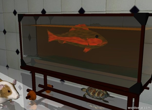 Input text: The orange gold fish is 1 feet in the fish tank. it is facing right. the tiny turtle is behind the fish tank. it is facing left.  the tile wall is a foot behind the fish tank. the ground is shiny.  The big guinea pig is in front of and -.5 feet to the left of the fish tank. it is facing right.