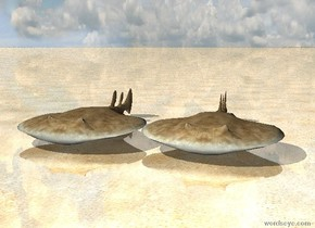 the sky is cloudy.  the ground is shiny sand.  two fish are on the ground.   .