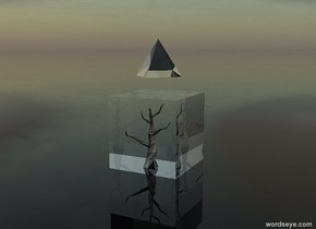 The ground is clear.   There is a translucent cube. It is 10 feet tall.  There is a shiny black tree 10 feet inside the cube. It is 9 feet tall.  There is a white translucent pyramid 2.5 feet above the cube.  It is 5 feet tall. It is facing southwest.  The giant yellow light is in the cube.