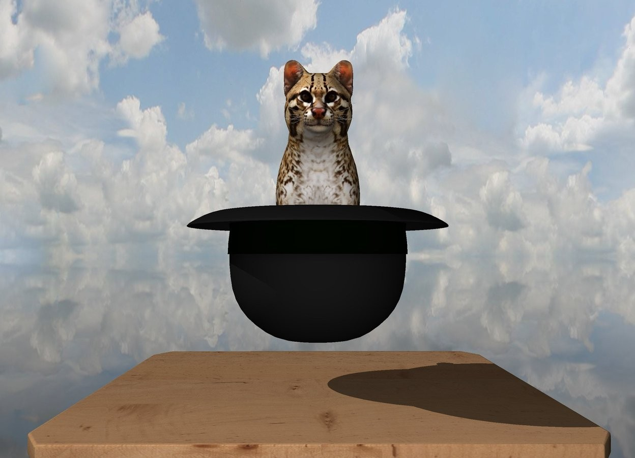 Input text: the big hat is upside down. it is 3 inches above the narrow table. the small cat is -2.7 inches in the hat. the ground is transparent.