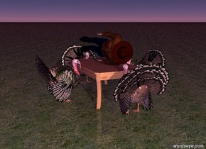 There is a table. It is 2 feet tall.  There is a turkey in front of the table. It is facing the table. there is a turkey behind the table. It is facing the table. There is a turkey to the right of the table. it is facing the table.  There is a turkey to the left of the table. It is facing the table.   There is a human on the table. He is leaning 90 degrees to the left.   The ground is grass. The ambient light is purple. It is dawn.