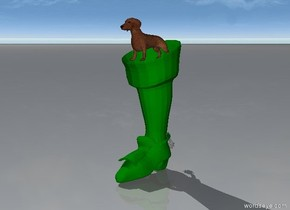 the dachshund is in a huge green stocking