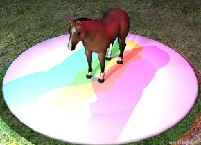 the ground is grass.  a very small horse is standing on a very large plate.  it is night.  there is a blue light 4 inches above the horse.  there is a red light 4 inches above and to the right of the horse.  there is a green light 4 inches above and to the left of the horse.  there is a white light 4 inches in front of the horse.