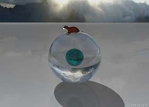 there is a raccoon inside a 4  feet tall clear sphere. there is a translucent teal sphere 2.5 feet in the clear sphere.