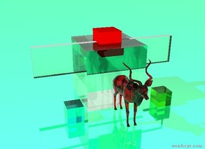 the sky is honeydew. the ground is shiny spring green. there is an 8 feet tall clear cube. there is a 3 feet tall red cube 1.5 feet in the clear cube. there is a four feet high clear wall four feet in the clear cube. there is a two feet high translucent cyan cube in front of the clear cube. it is 1 feet to the left. there is a two feet high translucent lawn green cube in front of the clear cube. it is 1 feet to the right. there is a translucent red antelope in front of the clear cube. the antelope is 7 feet in the the ground.