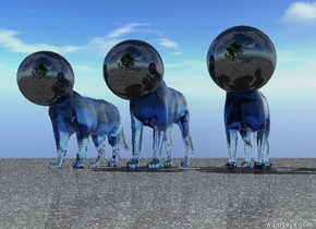 there are 3 5 foot tall translucent forget me not blue cats. they are 30 inches apart. there are 3 32 inch tall shiny black spheres. the spheres are 2 feet inside the cats. the spheres are -31 inches in front of the cats. the spheres are 24 inches apart. the ground is asphalt. there is a 24 foot tall tree 6 feet in front of the cats.