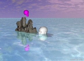 it is morning . the fuchsia skull one inch above the rock .  the big white head one feet from the rock facing north .  the big white head is -8 inch above the ground .   the ground is shiny aquamarine water .