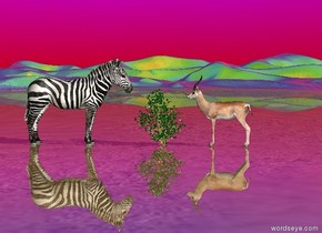it is morning .  the sky is rainbow.  antelope is facing the zebra.  zebra is facing the antelope.  bush is to the left of the antelope.  the desert is shiny