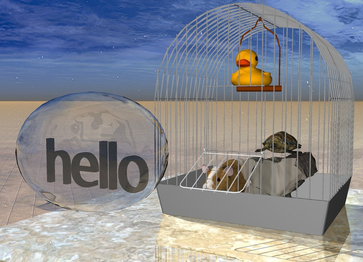 """Input text: the cage is on the shiny marble table. the guinea pig and very tiny rock are in the cage. the very tiny turtle is on the rock. the small  duck is 10 inches in the cage.  the tiny talk balloon is a foot in front of the cage. it is 6 inches above the table. the """"hello"""" fits in the talk balloon. the ground is shiny tile."""