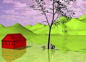 2 large dogs are under a large tree.  3 medium dogs are 3 feet to the left of the tree.  The ground is yellow-green.  A red cabin is 25 feet to the left of the tree.