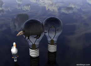 There are two  huge transparent lightbulbs. Inside the lightbulb there is a small armadillo facing to the left. Inside the other lightbulb there is a small duck. The ground is transparent.