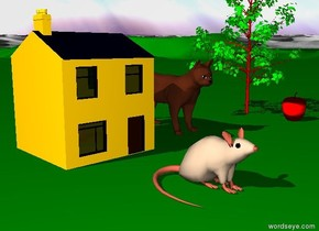 there is a huge cat on a green terrain. There is a tiny house three feet left of the cat. Three feet in front of the house is a huge mouse. A tiny tree is two feet right of the cat. A huge red apple is three feet in front of the tree.