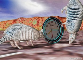 the armadillo is facing the  clock. the clock is facing the armadillo. it is 4 inches away from the clock. the second armadillo is facing down. it is in front of the clock.