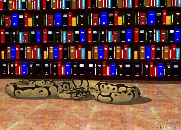 Input text: four bookcases. the ground is parquet. a python is three feet in front of the bookcases.