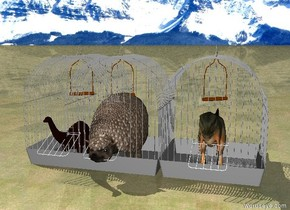 The ground is grass. The background is mountain. The sky is sunny. The very little t-rex is in a very big birdcage. The very big cage is 3 feet next to the birdcage. The very little brontosaurus is in the very big cage. The very big bird cage is 3 feet next to the birdcage. The glyptodon is in the very big bird cage. The cage is next to the bird cage. The bird cage is next to the birdcage. The birdcage is on the left of the cage. The bird cage is on the left of the birdcage.