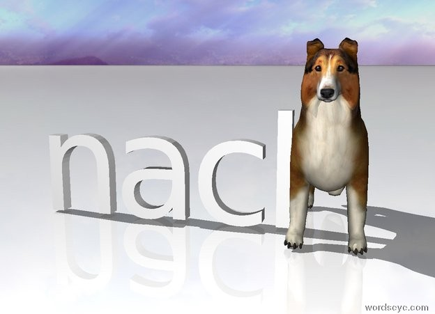 Input text: nacl is left of the collie. the ground is white.
