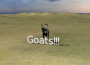 "There is a mountain. A goat is behind ""Goats!!!"" and in the mountain. The ground is grass."