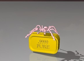 pink tarantula on gold bar