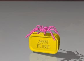 hot pink tarantula on gold bar