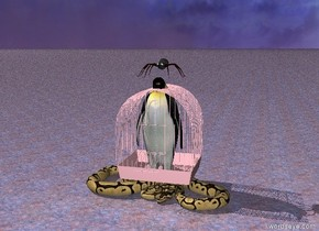 A penguin is inside a large pink cage.    the ground is stone. a snake is below the cage.  an enormous spider is above the penguin
