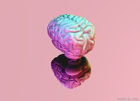 the sky is pink. the ground is silver. there is a grey brain. there is a cyan light 3 feet above the brain. there is a magenta light 3 feet to the right of the brain. the magenta light is facing the brain. there is a yellow light 3 feet to the left of the brain. the yellow light is facing the brain. the green light is facing the brain. there is a red light 3 feet behind the brain. the red light is facing the brain.