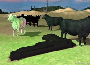 the first cow. a second cow is 9 feet behind and a foot to the right of the cow. it is facing left. a marble cow is 5 feet behind and a foot to the left of the first cow. it is facing southwest. three black cows are 20 feet behind the second cow. the ground is grass.  the enormous iron gray gun is 3 feet in front of the marble cow. it is facing left. it is leaning 90 degrees to the left. it is 5 inches in the ground.  the green light is 4 feet above the gun. the blue light is 2 feet to the right of the red light.