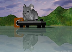 Giant Chinchilla on top of a turntable on the righthand side of a tiny washing machine.