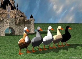 The large white duck is twenty feet in front of the [camo] tiny castle.  The large tan duck is to the right of the white duck. The large gray duck is to the left of the white duck. The ground has a grass texture. It is cloudy. The large black duck is to the right of the tan duck. A river is in back of the castle. The river is 100 feet long. The large [sand] duck is to the left of the gray duck. The  castle is in front of the ducks.