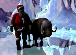 the muskox is on the water mountain range. the mountain range is 60 feet wide. it is cloudy.  the camera light is black. the ambient light is black.  Santa is next to the ox.